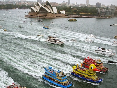 Inflatable Duck Sydney Harbour