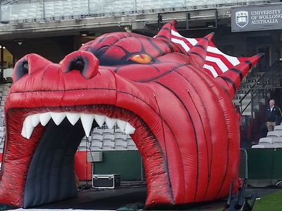 St George Dragons Inflatable Dragon Runthru